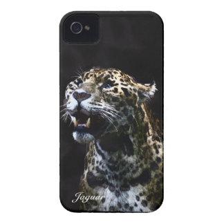 Jaguar, wilde Katze, Tier-Liebhaber, Tier-Kunst iPhone 4 Case-Mate Hülle