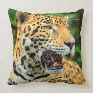 Jaguar zeigt seine Zähne, Belize Kissen