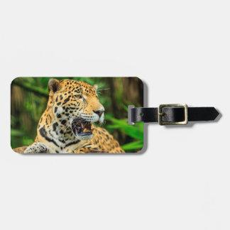 Jaguar zeigt seine Zähne, Belize Kofferanhänger