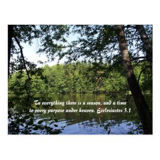 Jahreszeit Ecclesiastes See-Wald Postkarten