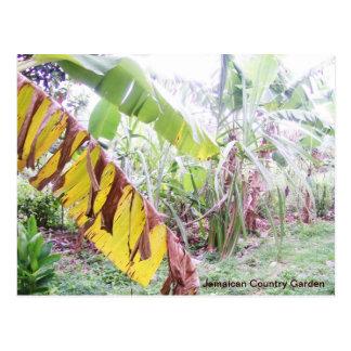 Jamaikanischer Land-Garten Postkarte