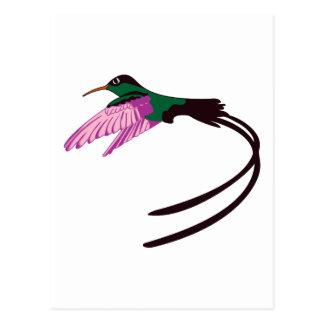 Jamaikanischer Vogel Postkarte