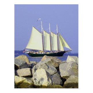 Jamestown Segelboot-Postkarte Postkarte