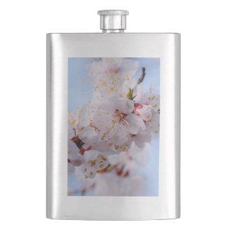 Japanische Aprikosen-Blüte Flachmann