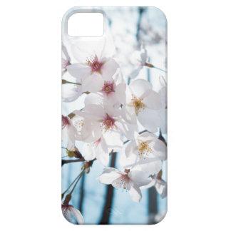 Japanische Kirschblüte Asiens Etui Fürs iPhone 5