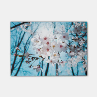 Japanische Kirschblüte Asiens Post-it Klebezettel