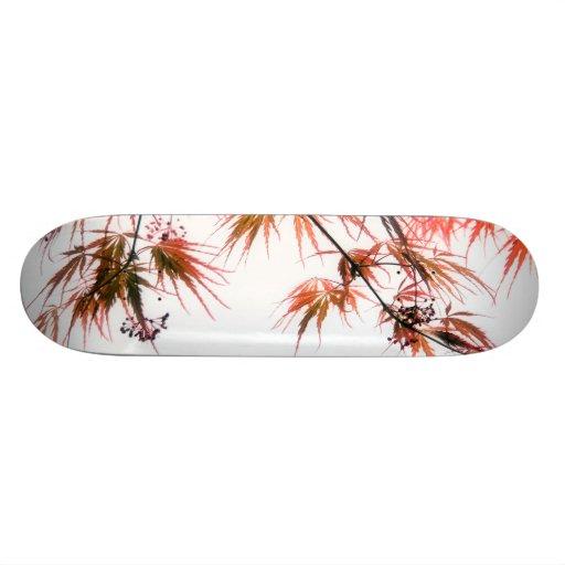 Japanische Rotahorn-Kunst-Fotografie Skateboardbrett