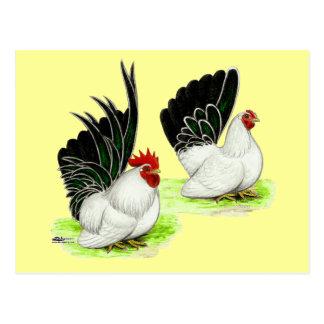 Japanische Schwarz-weiße Zwerghühner Postkarte