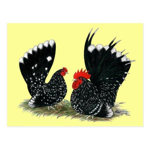 Japanische Zwerghühner gesprenkelt Postkarte