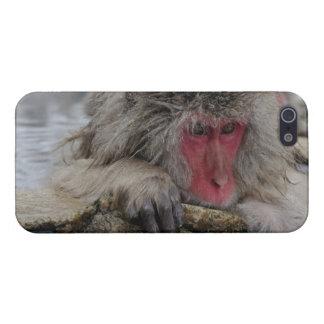 Japanischer Affe, der in der heißen Quelle sich en iPhone 5 Schutzhüllen