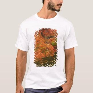 Japanischer Ahorn in Fallfarbe 2 T-Shirt