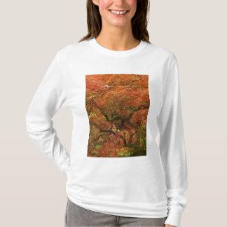 Japanischer Ahorn in Fallfarbe 4 T-Shirt
