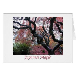 Japanischer Ahorn Karte
