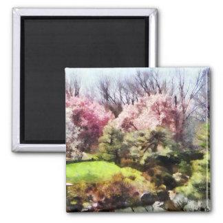 Japanischer Frühling Magnete