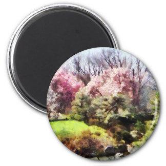 Japanischer Frühling Runder Magnet 5,7 Cm