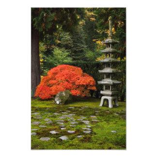 Japanischer Garten mit Pagode im Herbst Foto Druck