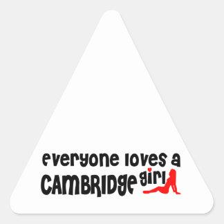Jeder Lieben ein Cambridge-Mädchen Dreieckiger Aufkleber