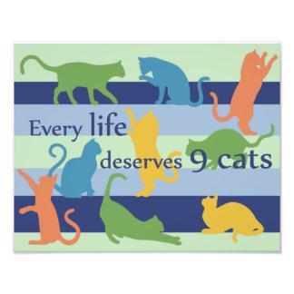 Jedes Leben verdient die 9 Katzen-lustiges Photographischer Druck