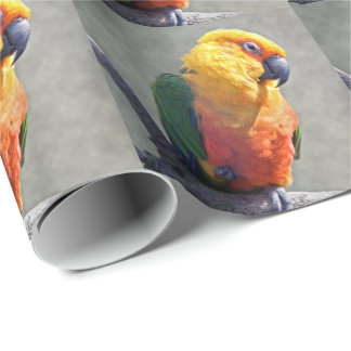 Jenday Conure Packpapier