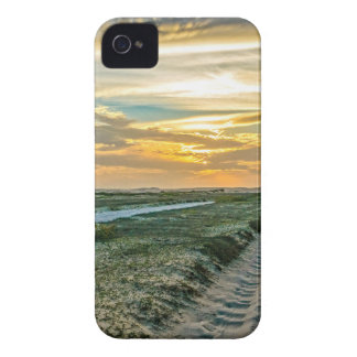 Jericoacoara Nationalpark-Dünen-Straße iPhone 4 Hüllen