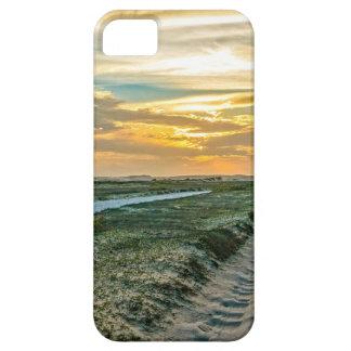 Jericoacoara Nationalpark-Dünen-Straße iPhone 5 Hüllen