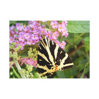 Jersey-Tiger-Schmetterlings-Leinwand-Druck Leinwanddruck