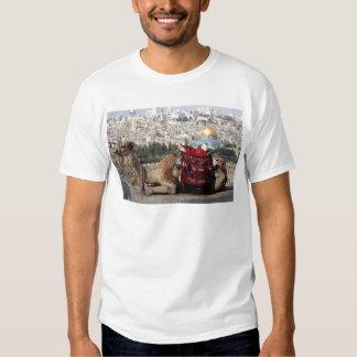 Jerusalem, Welt von colos, heilige Stadt Tshirt