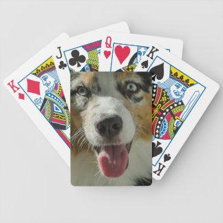 Joker-Junge Bicycle Spielkarten