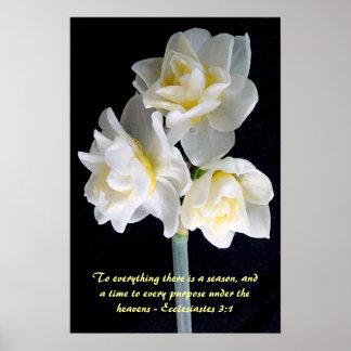Jonquil Blume - Ecclesiastes 3:1 Poster