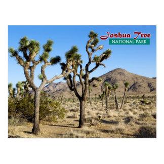 Joshua-Baum-Nationalpark, Kalifornien Postkarte