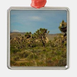 Joshua-Baum-Nationalpark-Wüsten-Landschaft Quadratisches Silberfarbenes Ornament