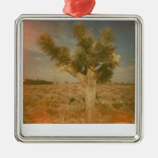 Joshua-Baum verziert Quadratisches Silberfarbenes Ornament