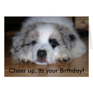 Jubeln Sie oben, sein Ihr Geburtstag zu! Karte