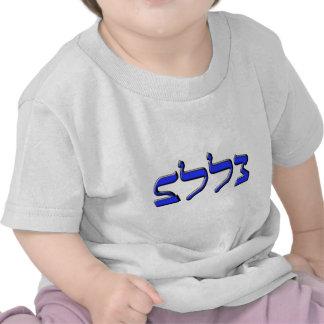 Jüdisches neues Jahr 5773 T Shirts