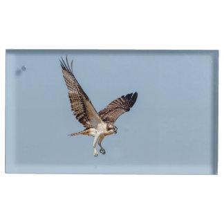 Jugendlicher Osprey im Flug Tischnummernhalter