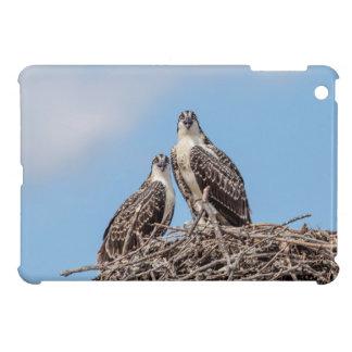 Jugendlicher Osprey im Nest iPad Mini Hülle