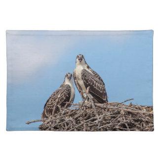 Jugendlicher Osprey im Nest Tischset