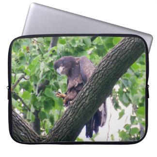 Jugendlicher Weißkopfseeadler Laptop Sleeve
