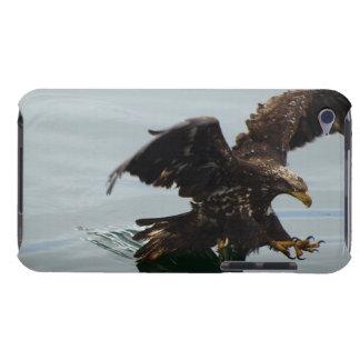 Jugendlicher Weißkopfseeadler-wilder Vogel iPod Case-Mate Case