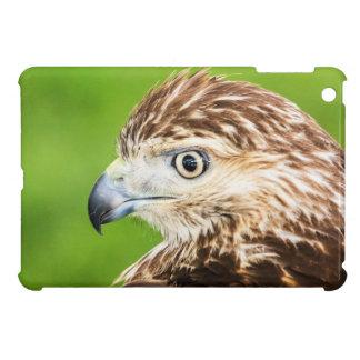 Jugendliches Rot angebundener Falke iPad Mini Schale
