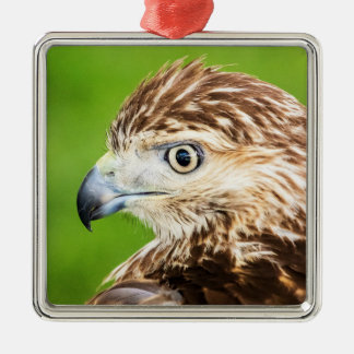 Jugendliches Rot angebundener Falke Silbernes Ornament