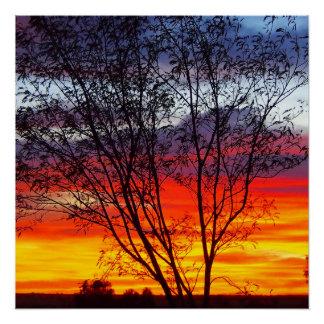 Julia Creek Sonnenuntergang-Silhouetteplakat Poster