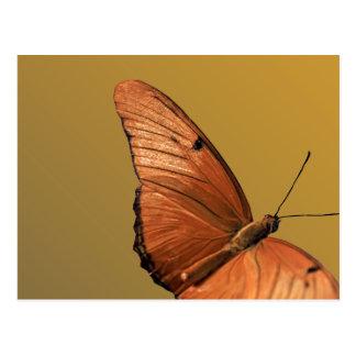 Julia-Schmetterling Postkarte