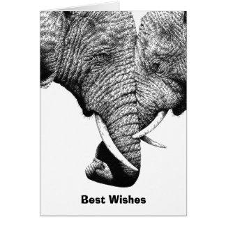 Junge afrikanische Elefant-Geburtstags-Karte Karte