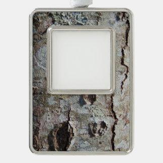Junge Ahornbaum-Barke 0041 Rahmen-Ornament Silber