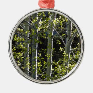 Junge Aspen-Bäume Silbernes Ornament