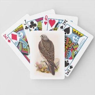 Junge Island-Falke Gould Vögel von Großbritannien Bicycle Spielkarten