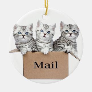 Junge Katzen im Sammelpack mit Wort Post Rundes Keramik Ornament