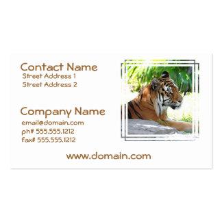 Junge Tiger-Visitenkarten