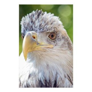 Junger Ball Eagle Briefpapier